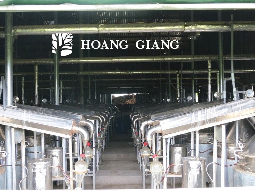 Hoang Giang Agarwood oil distillers factory
